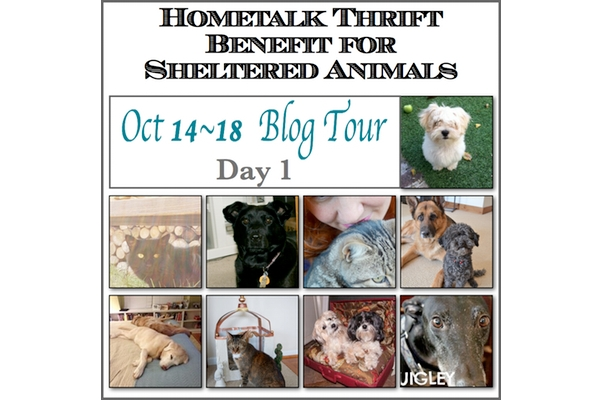 Blog Tour Day 1 FP