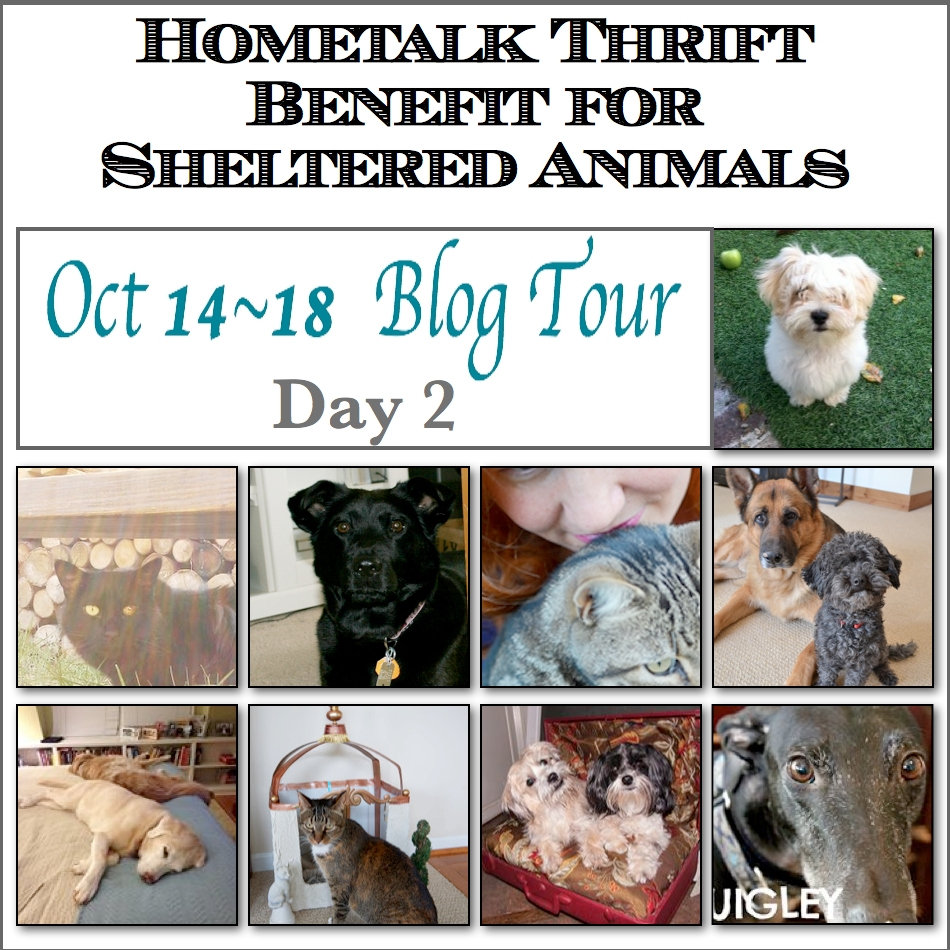 Blog Tour Day 2