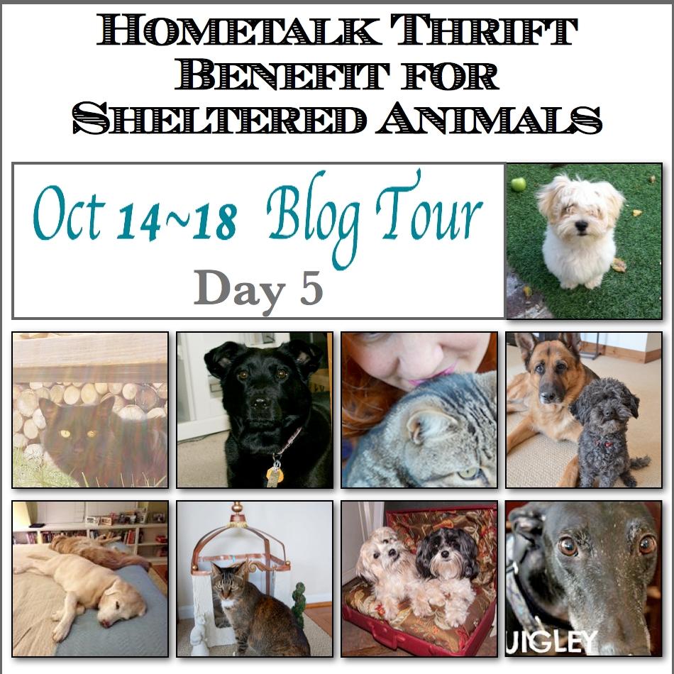 Blog Tour Day 5