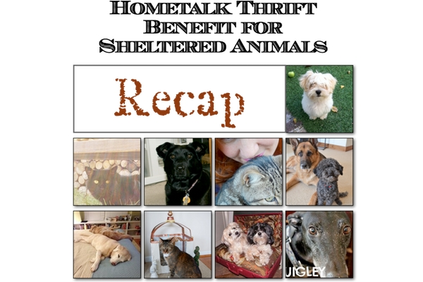 Thrift Benefit for Sheltered Animals Recap FP
