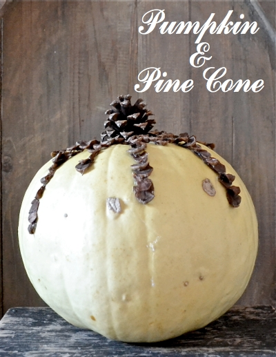 Unique Pumpkin Display CDS pine cone