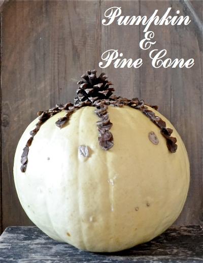 Unique Pumpkin Display CDS pine cone