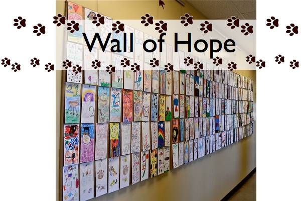 Wall of Hope FP