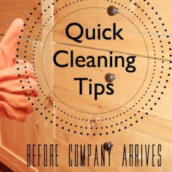 Quick Cleaning Tips FP