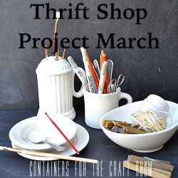 Thrift Shop Project March Thumb