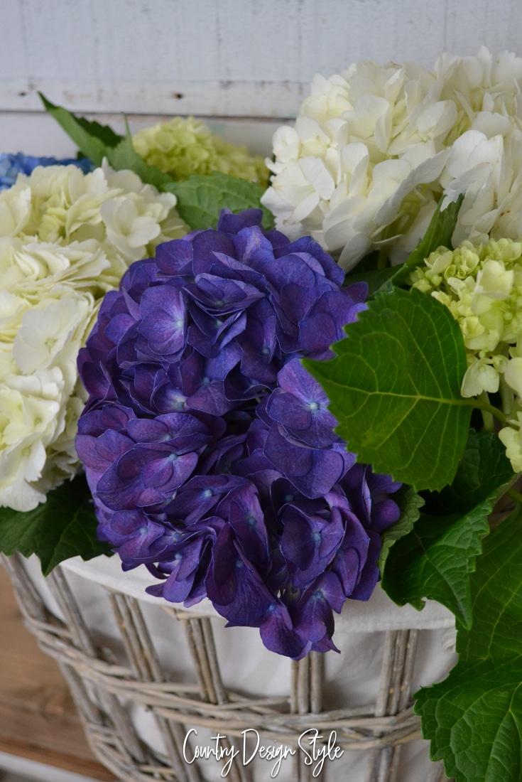 keeping hydrangeas longer