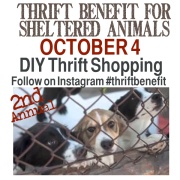 Thrift Benefit Instagram Shopping https://countrydesignstyle.com #thriftbenefit