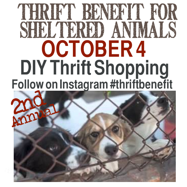 Thrift Benefit Instagram Shopping http://countrydesignstyle.com #thriftbenefit