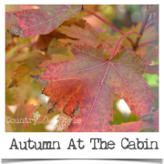 Autumn-at-the-cabin-country-design-style-feature-polaroid