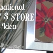 diy-dollar-store-gift-country-design-style-fp