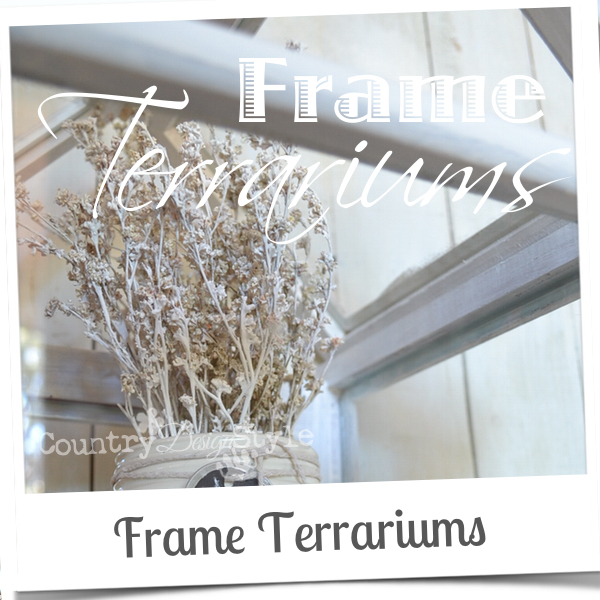 frame-terrariums-country-design-style-fpol