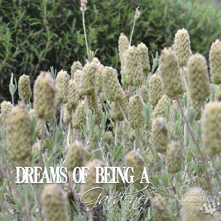 dreams-of-being-a-gardener-country-design-style-sq
