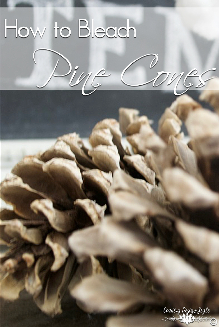 how-to-bleach-pine-cones-country-design-style-countrydesignstyle-com
