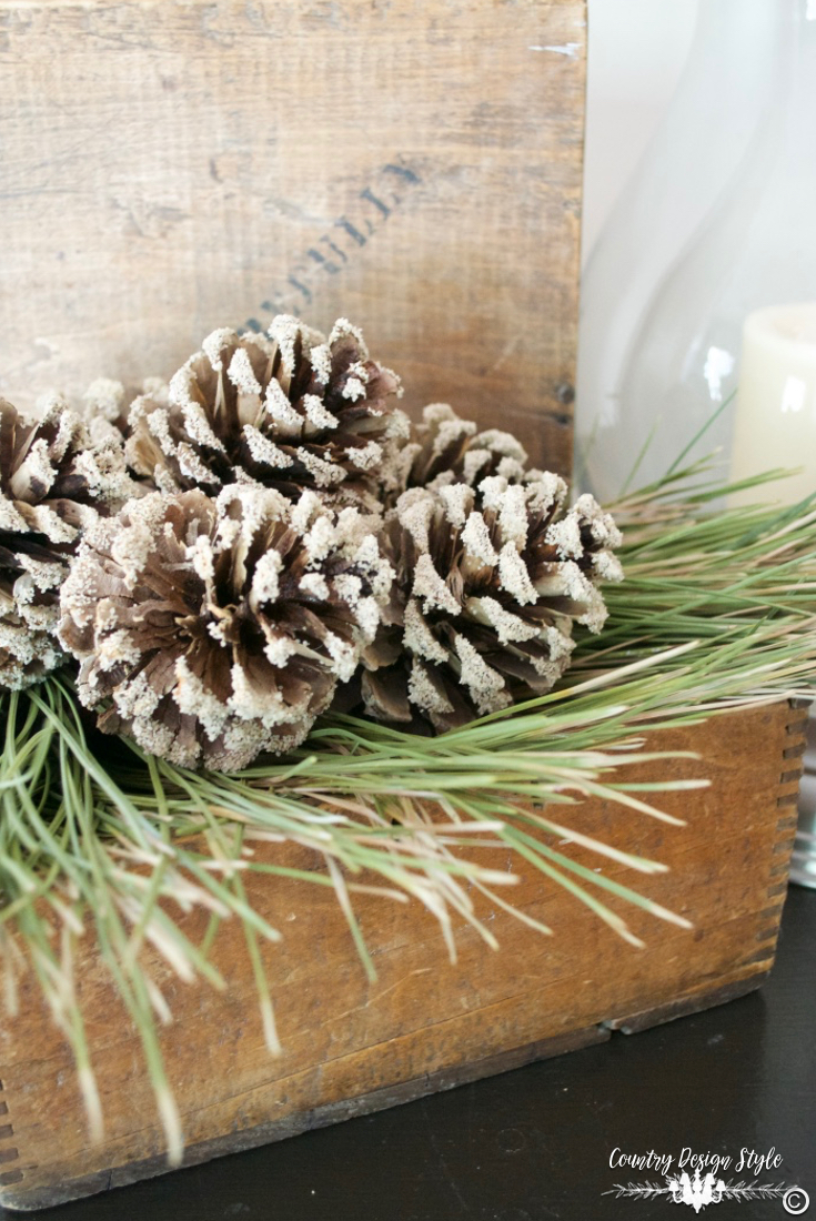 how-to-bleach-pine-cones-add-sand-country-design-style-countrydesignstyle-com