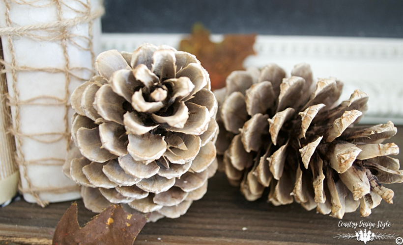 How-to-bleach-pine-cones-feature non sandy | Country Design Style | countrydesignstyle.com.jpg