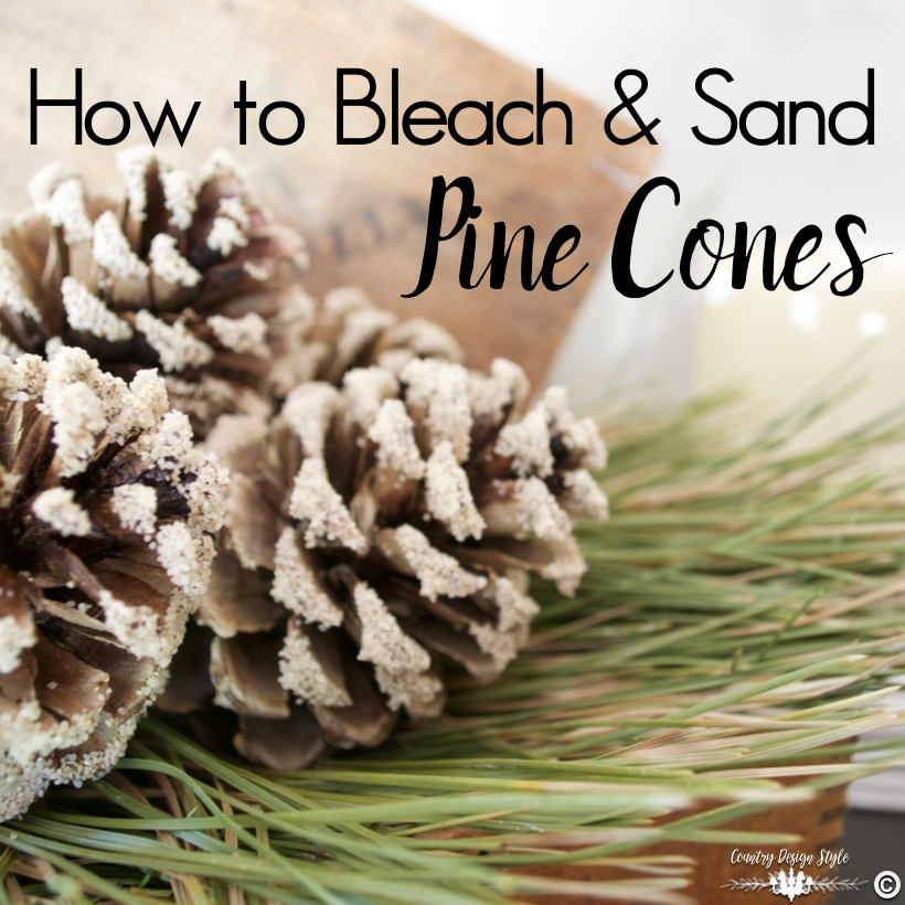 how-to-bleach-pine-cones-for-pinning-country-design-style-countrydesignstyle-com