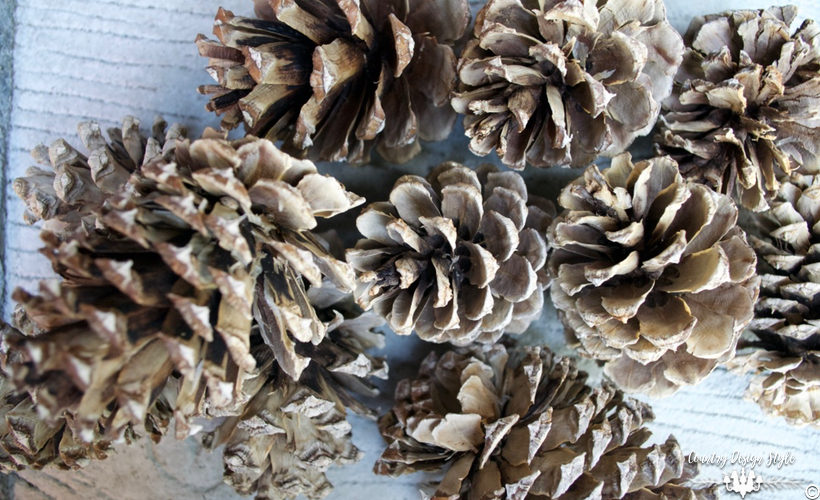 how-to-bleach-pine-cones-opened-country-design-style-countrydesignstyle-com