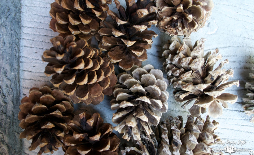 how-to-bleach-pine-cones-regular-cones-country-design-style-countrydesignstyle-com