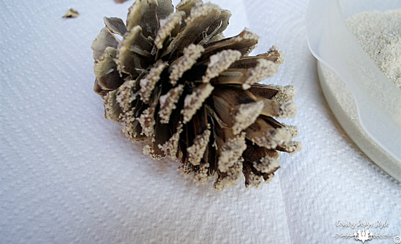how-to-bleach-pine-cones-sanded-country-design-style-countrydesignstyle-com