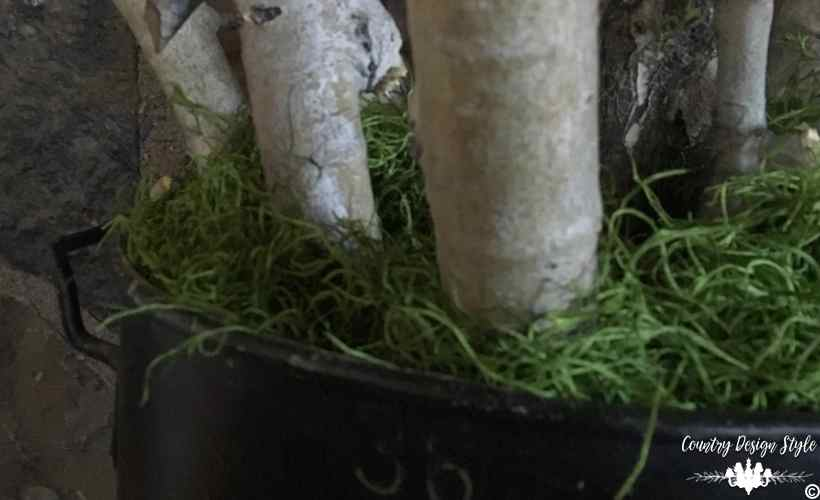 Birch Log Projects