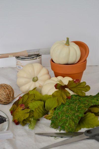 Easy Fall Mini Pumpkin Decor