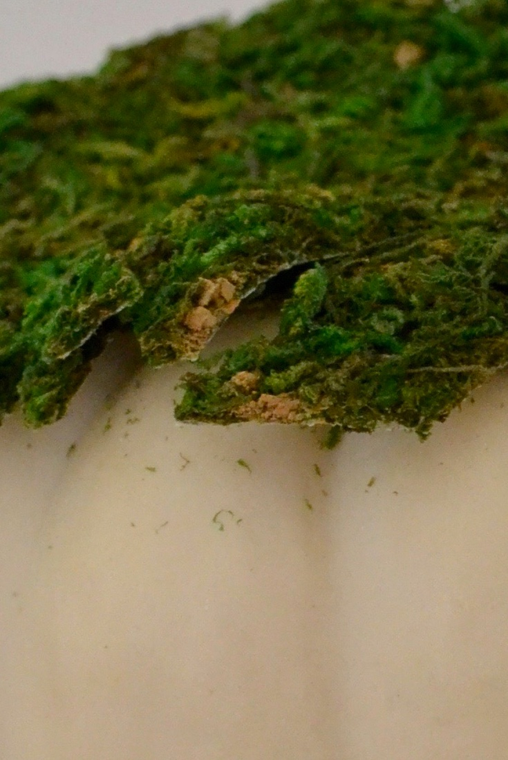 Fall Mini Pumpkin Decor layer 2 moss