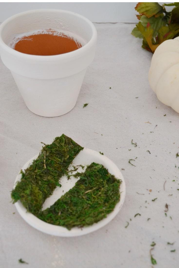Fall Mini Pumpkin Decor moss