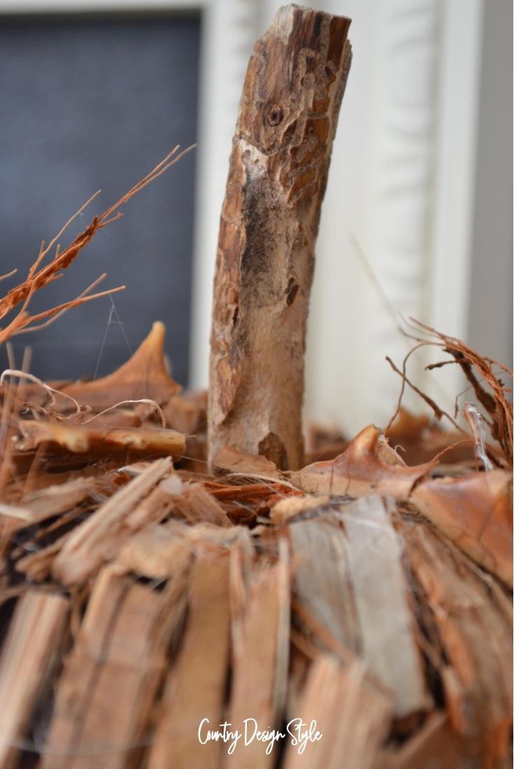Otis stick for a pumpkin stem