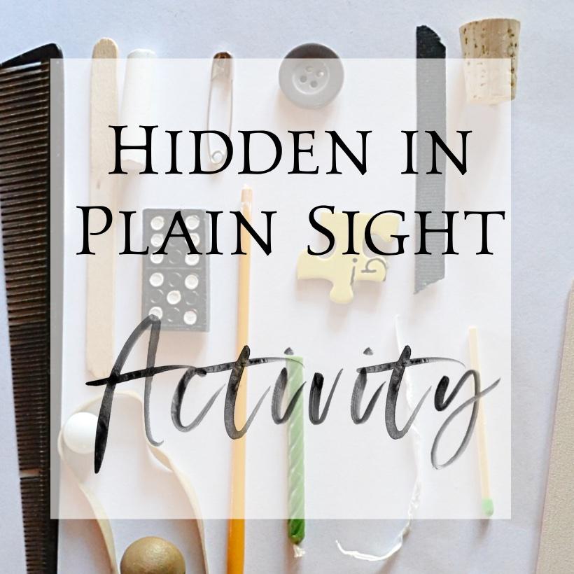 hidden in plain sight sq