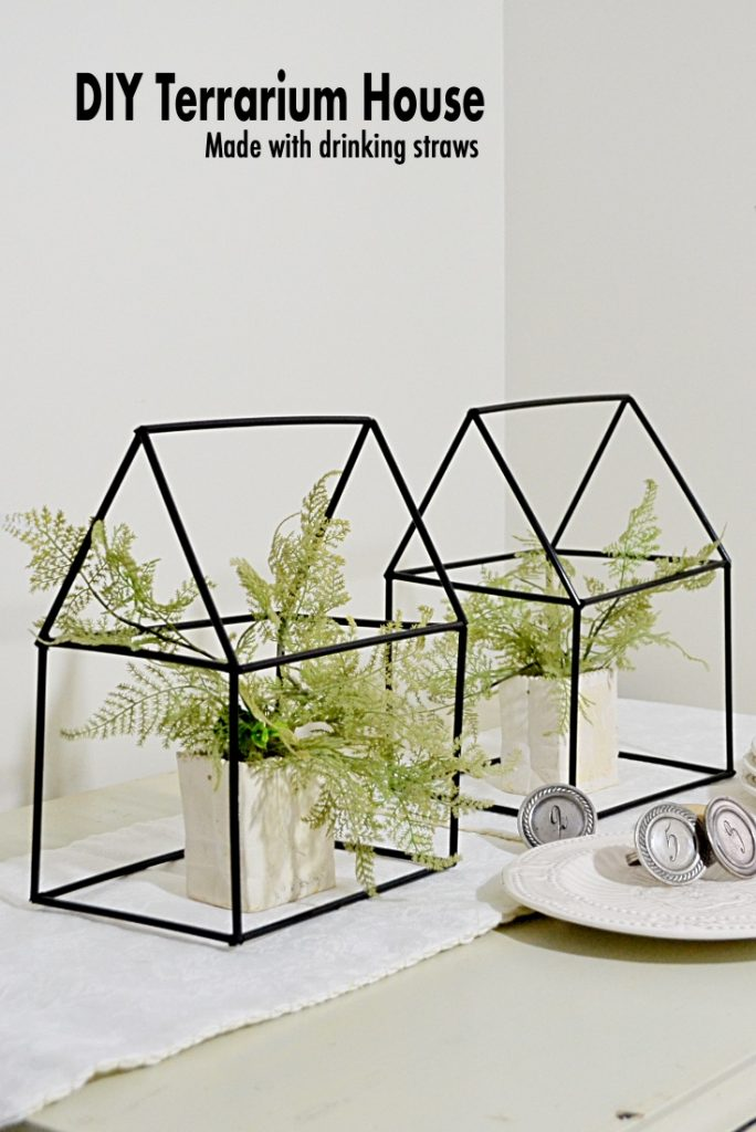 DIY Terrariums made with straws