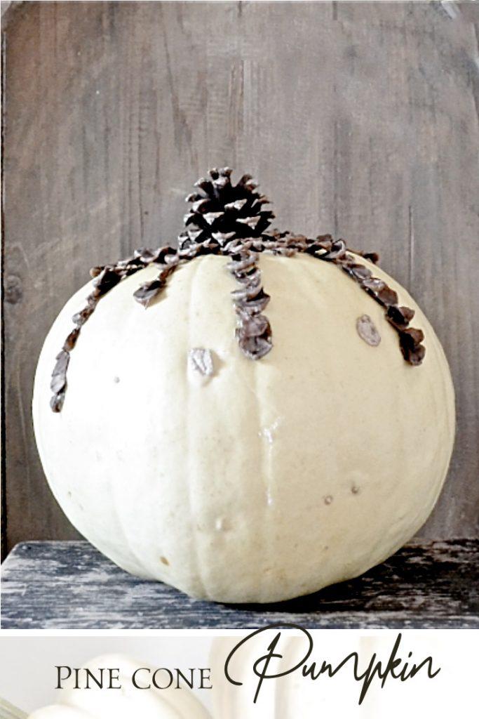 Cream pumpkin with brown pine cone stem.