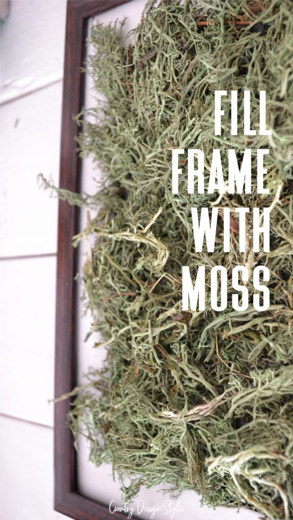frame filled with moss for dollar store succulents ideas