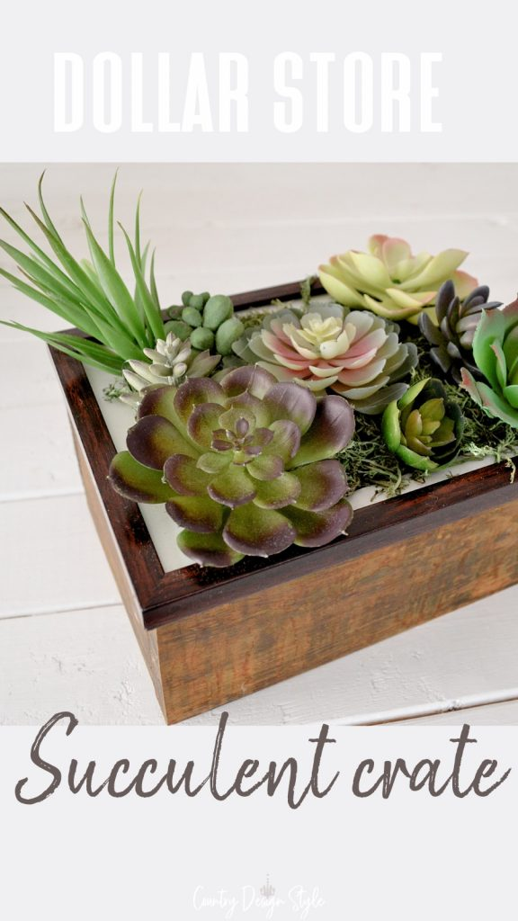 succulent frame on crate