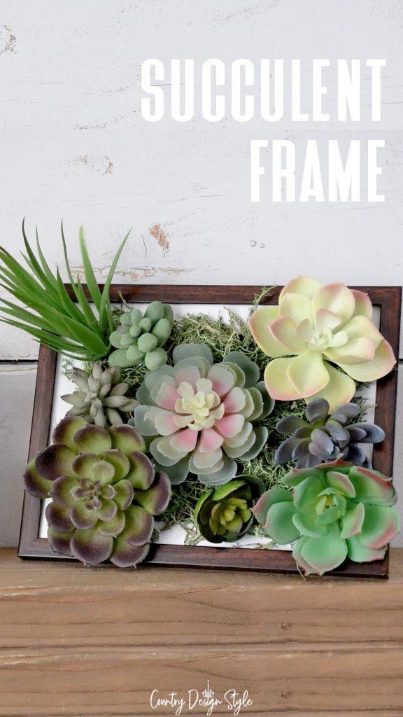 succulent frame landscape